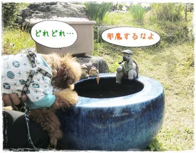 20110504blog8.jpg