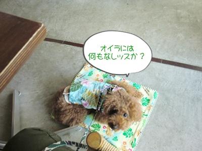 20110627blog2.jpg
