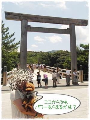 20110709blog11.jpg