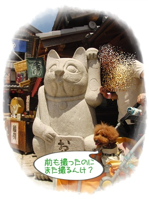 20110709blog7.jpg