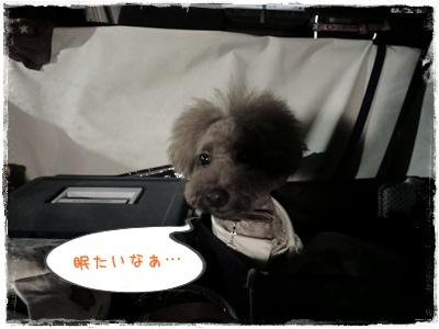 20110826blog1.jpg
