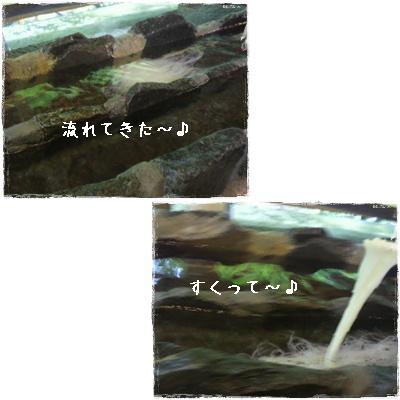 20110826blog48.jpg