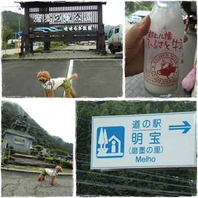 20110826blog5.jpg