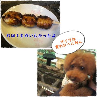20110826blog50.jpg