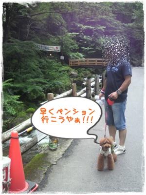 20110826blog51.jpg