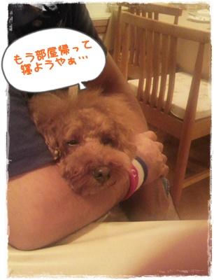20110826blog60.jpg