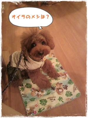 20110826blog66.jpg