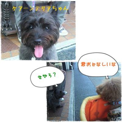 20110827blog10.jpg