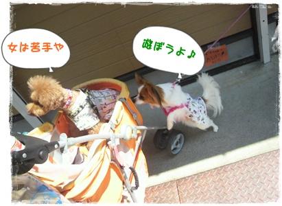 20110827blog18.jpg