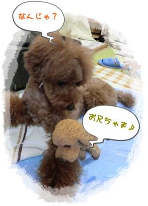 20110827blog40.jpg