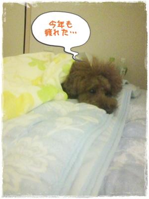 20110827blog43.jpg
