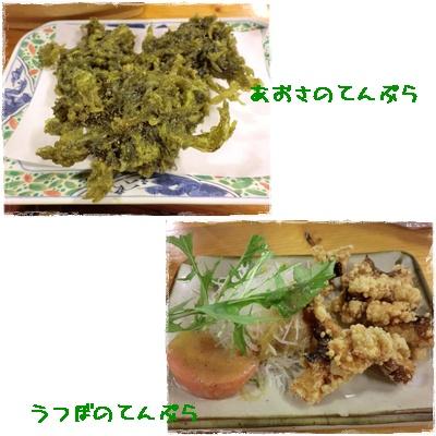 20111001blog14.jpg