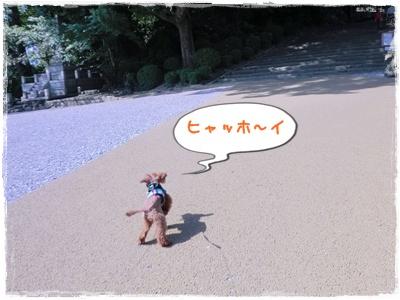 20111001blog7.jpg
