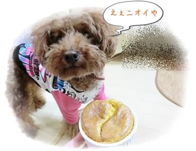 20111225blog1.jpg