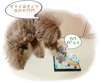 20120229blog5.jpg