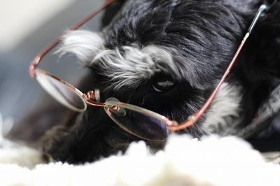 眼鏡のヴァルト 013