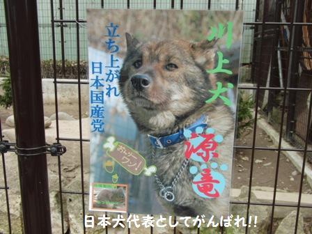 日本国産党