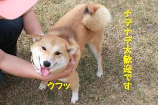 まりんちゃん