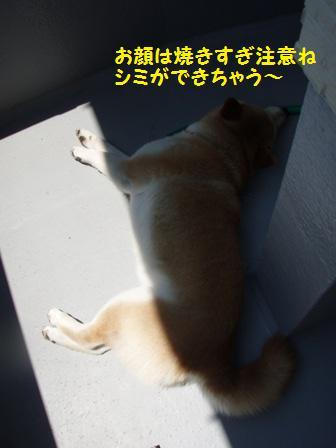 日焼け注意