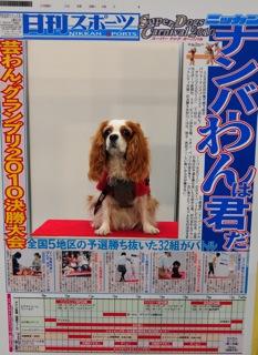 2010.11.14新聞こも