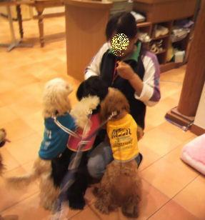 2010.11.2お店~