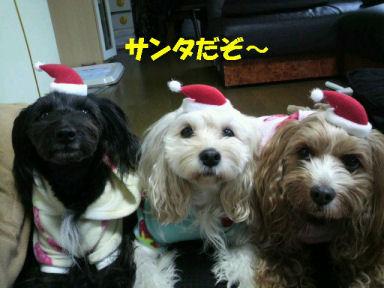 2010.12.24チビッ子サンタ