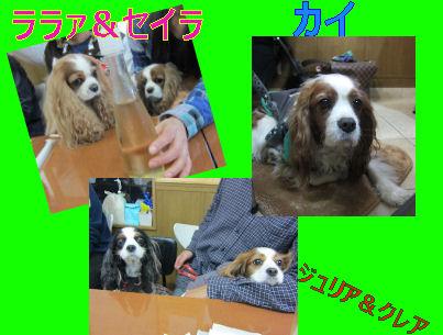 2010.12.11お友達2