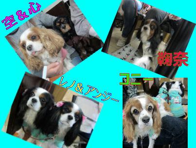 2010.12.11お友達3