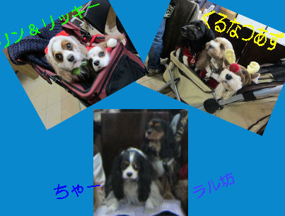 2010/12/11お友達4