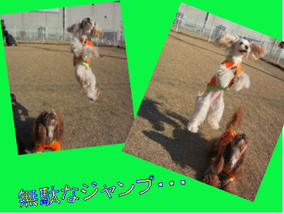 2010.12.19じゃーんぷ