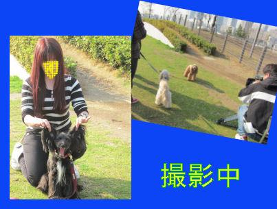 2010.12.22撮影中2