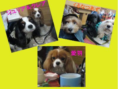 2011.2.2めんばー