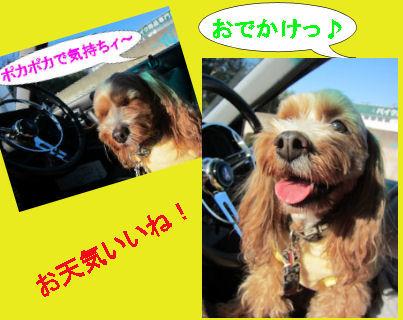 2011.2.13いい天気