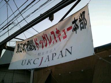 2011.4.29旗