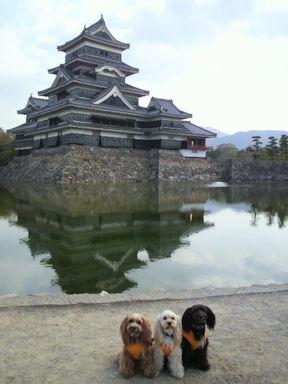 2011.5.4松本城2