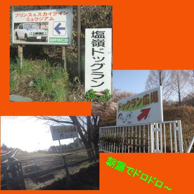 2011.5.4公園