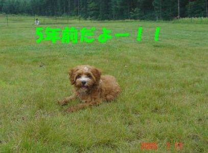 2005.7.17のくるみさん
