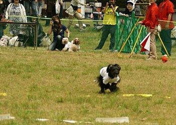 2010.5.4なっつダッシュ~