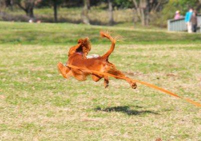 飛ぶ!2010.3.21
