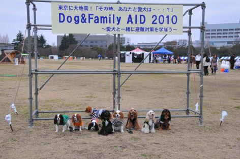 dog&family AID 2010