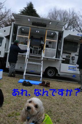 揺れる車2010.3.28①