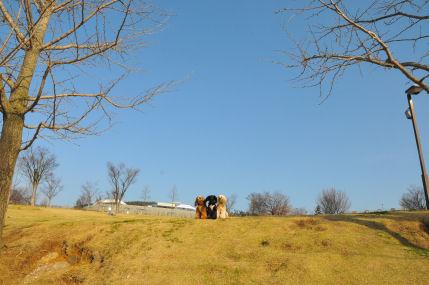 フルーツ公園2010.4.4