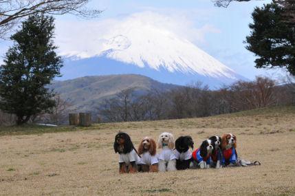 富士山バックにみんなで2010.4.11
