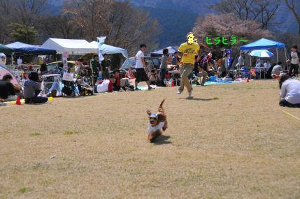 くるみまっしぐら2010.4.11