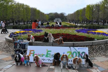 記念公園にて2010.4.18みんな