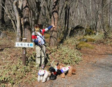 吐竜の滝2010.5.1