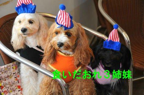 2010.5.22食いだおれ3姉妹