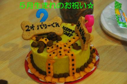2010.5.29BDケーキ
