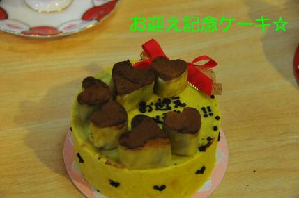 2010.5.29お披露目ケーキ