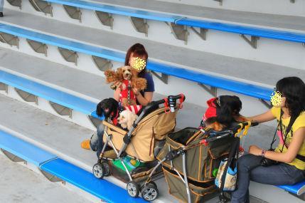 2010.6.12ショーを見るよ~